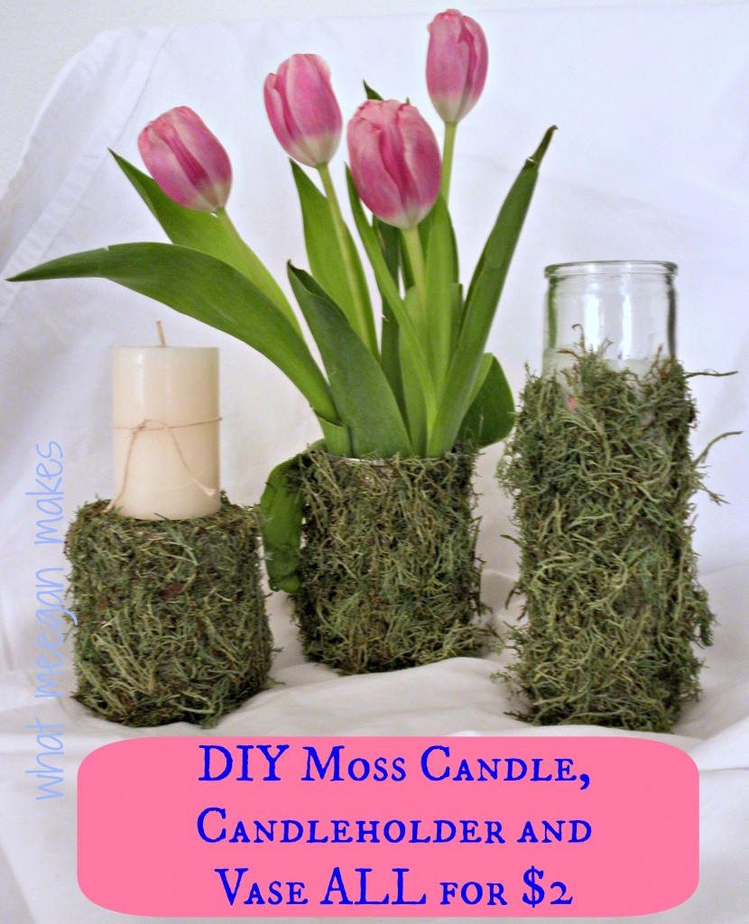 DIY Moss Candle, Candle Holder, and Vase ALL for $2
