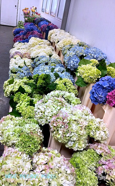 My Visit to The Floral Market With a Few Floral Tips