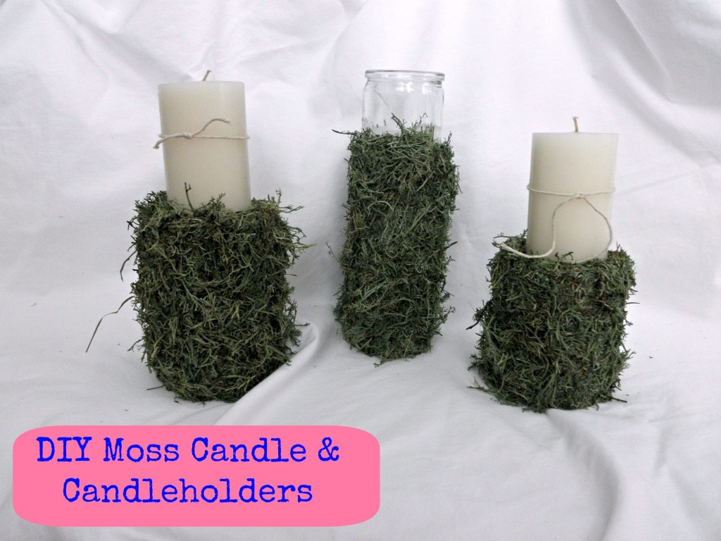 DIY Moss Candle, Candle Holder and Vase ALL for $2