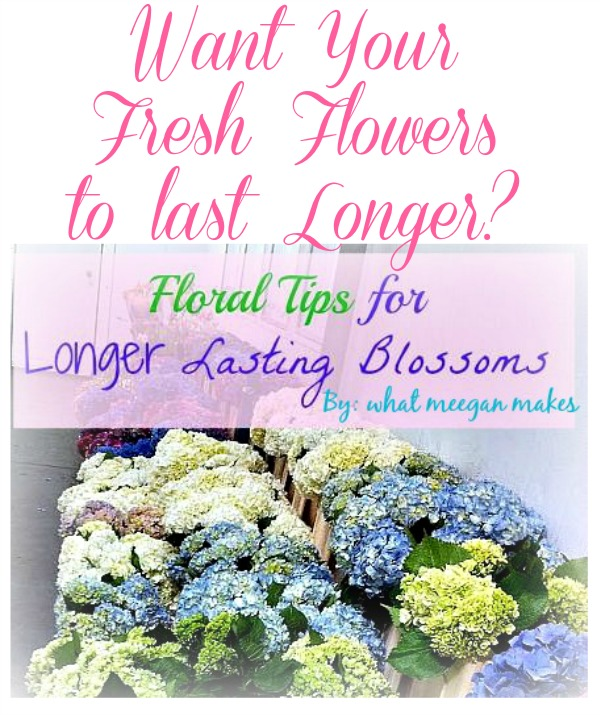 Floral Tips for longer Lasting Blossoms