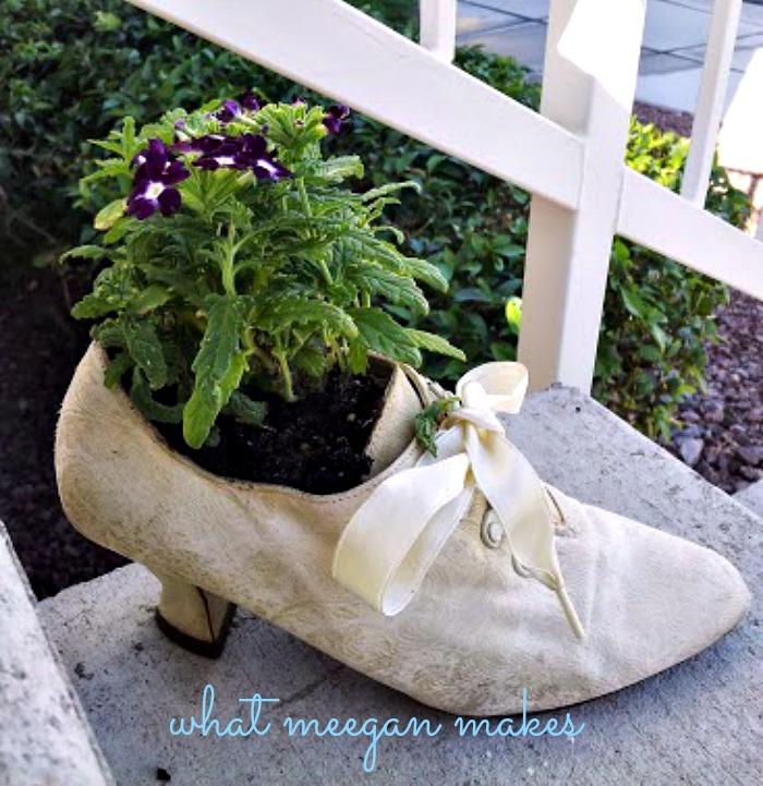 Garden In a Shoe