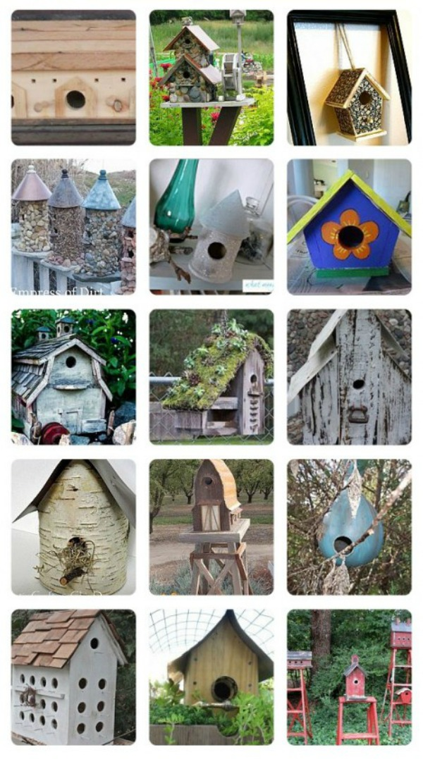 Bird House Ideas