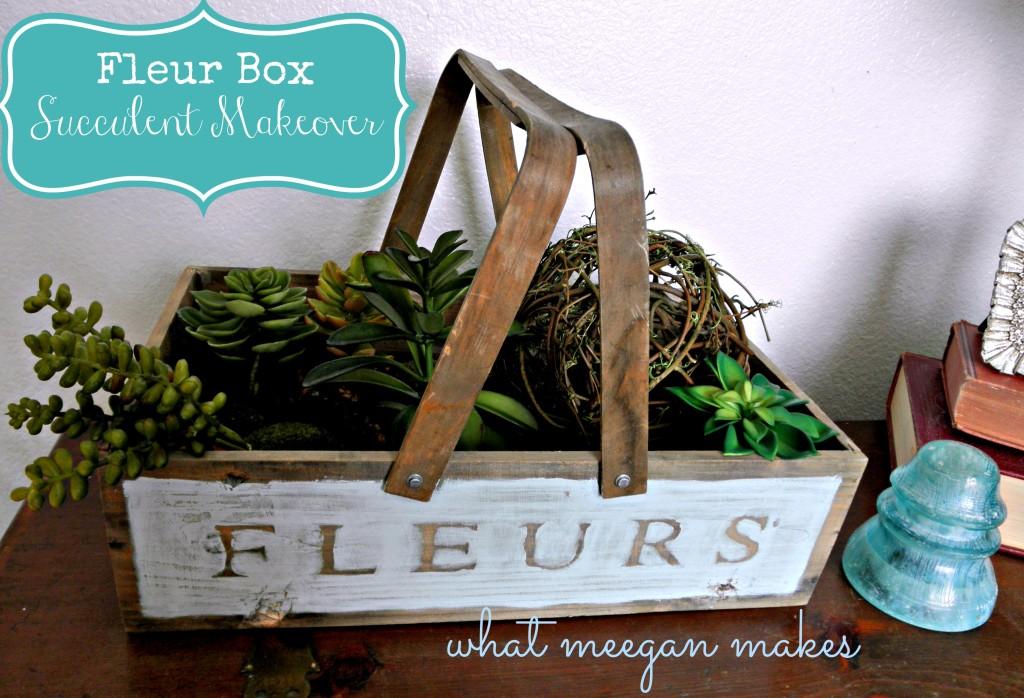 fleur box succulent makeover