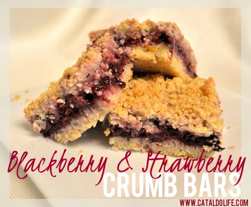 Blackberry-Strawberry-Crumb-Bars
