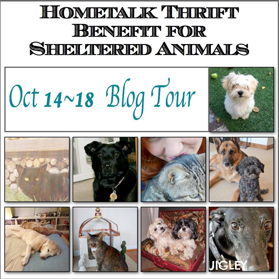 Hometalk Thrift Benefit for Sheltered Animals