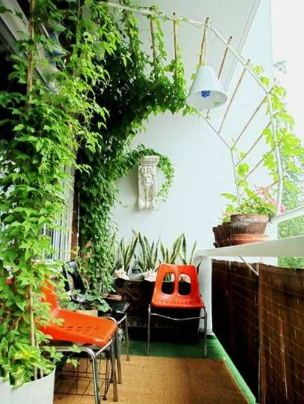 Growing Vines Garden