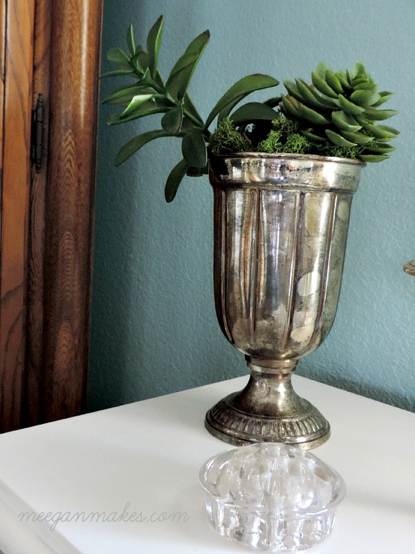 Silver Cup with Succulents