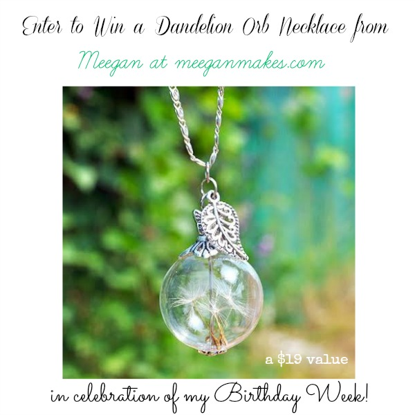 Enter to Win a Dandelion Orb Necklace from Meegan at meeganmakes.com