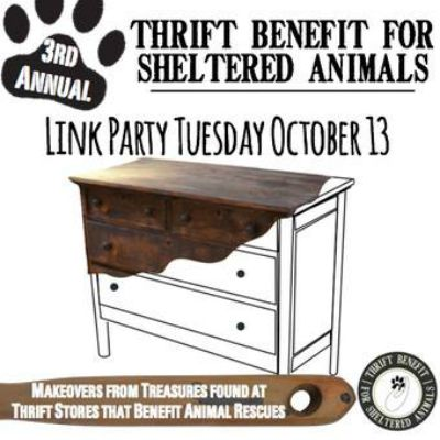 Thrifted Benefit Event 2015