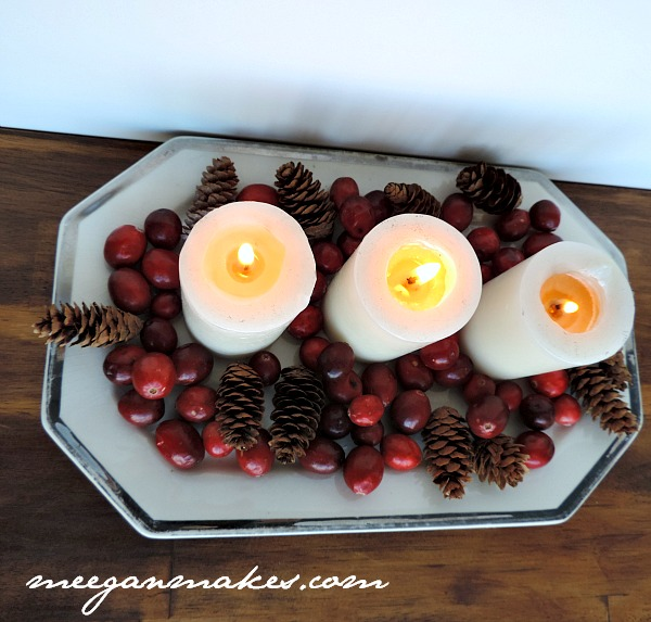 Cranberry and Pine Cone Centerpiece