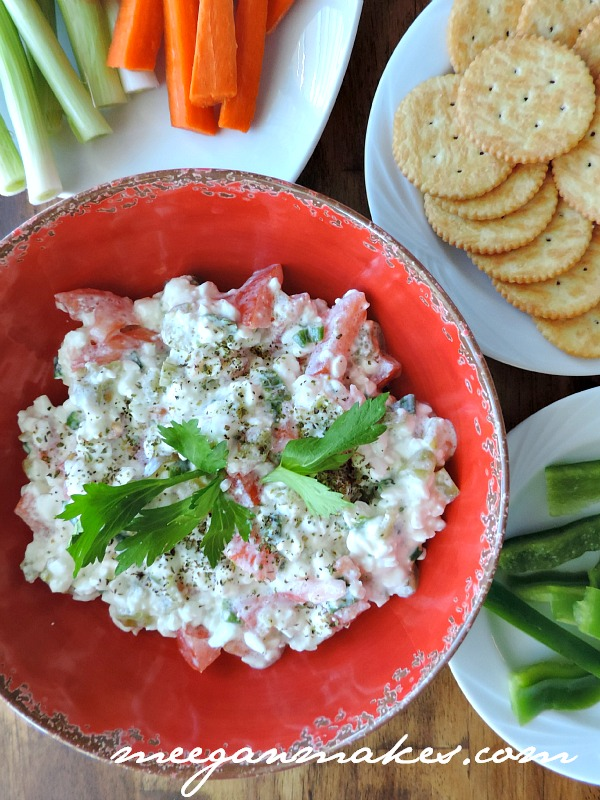 Italian Cottage Cheese Vegetable Dip