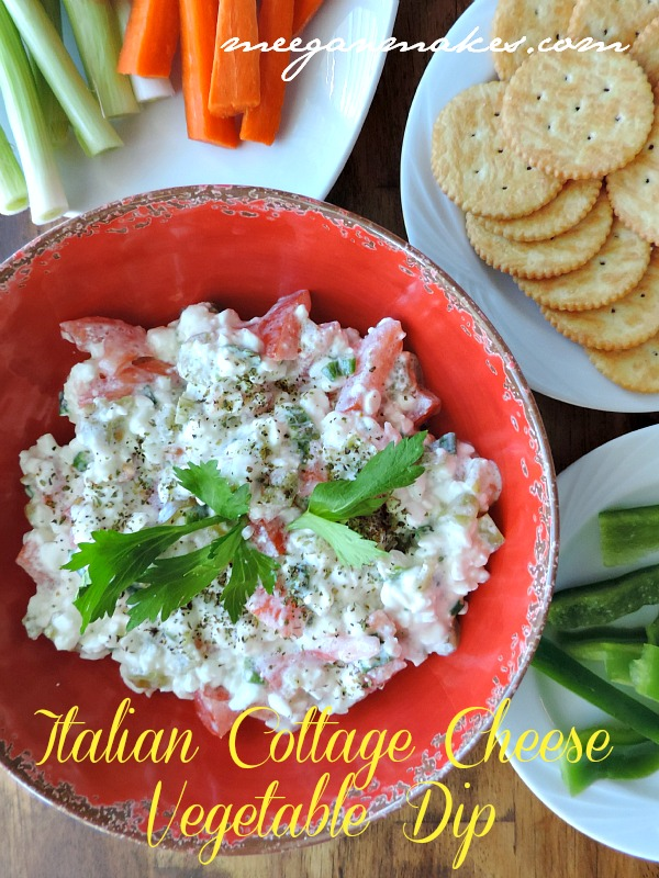 Italian Cottage Cheese Vegetable Dip