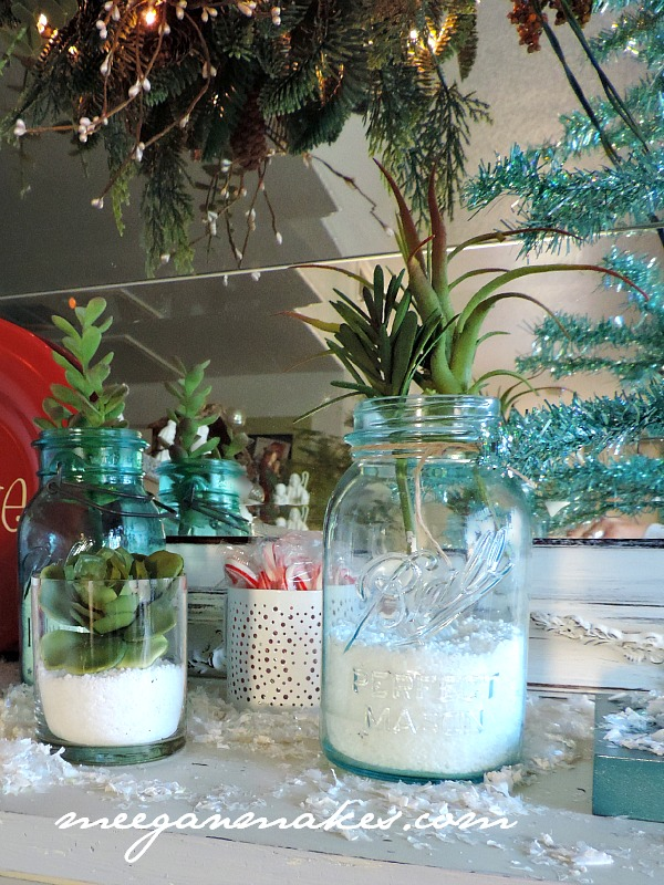 Succulents for Christmas Decorating