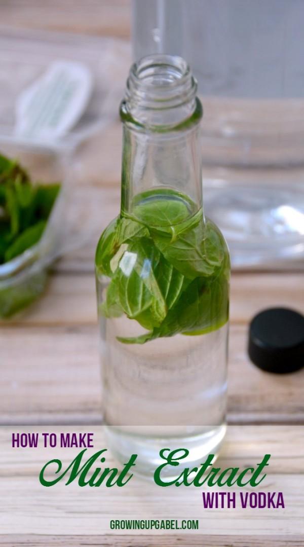 InsMonEasy-Mint-Extract-Recipe