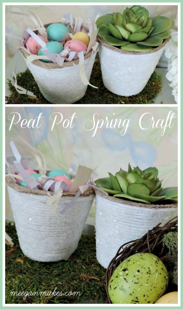 Peat Pot Spring Craft