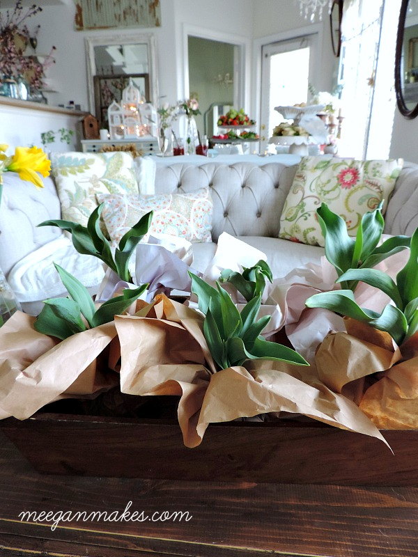 Perfect Spring Tulip Hostess Gifts