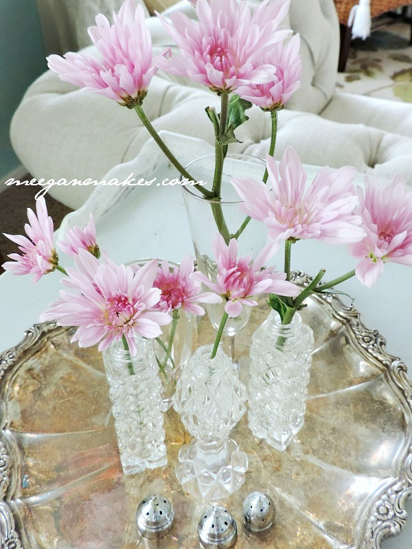 Daisy Mums for Spring Decoring