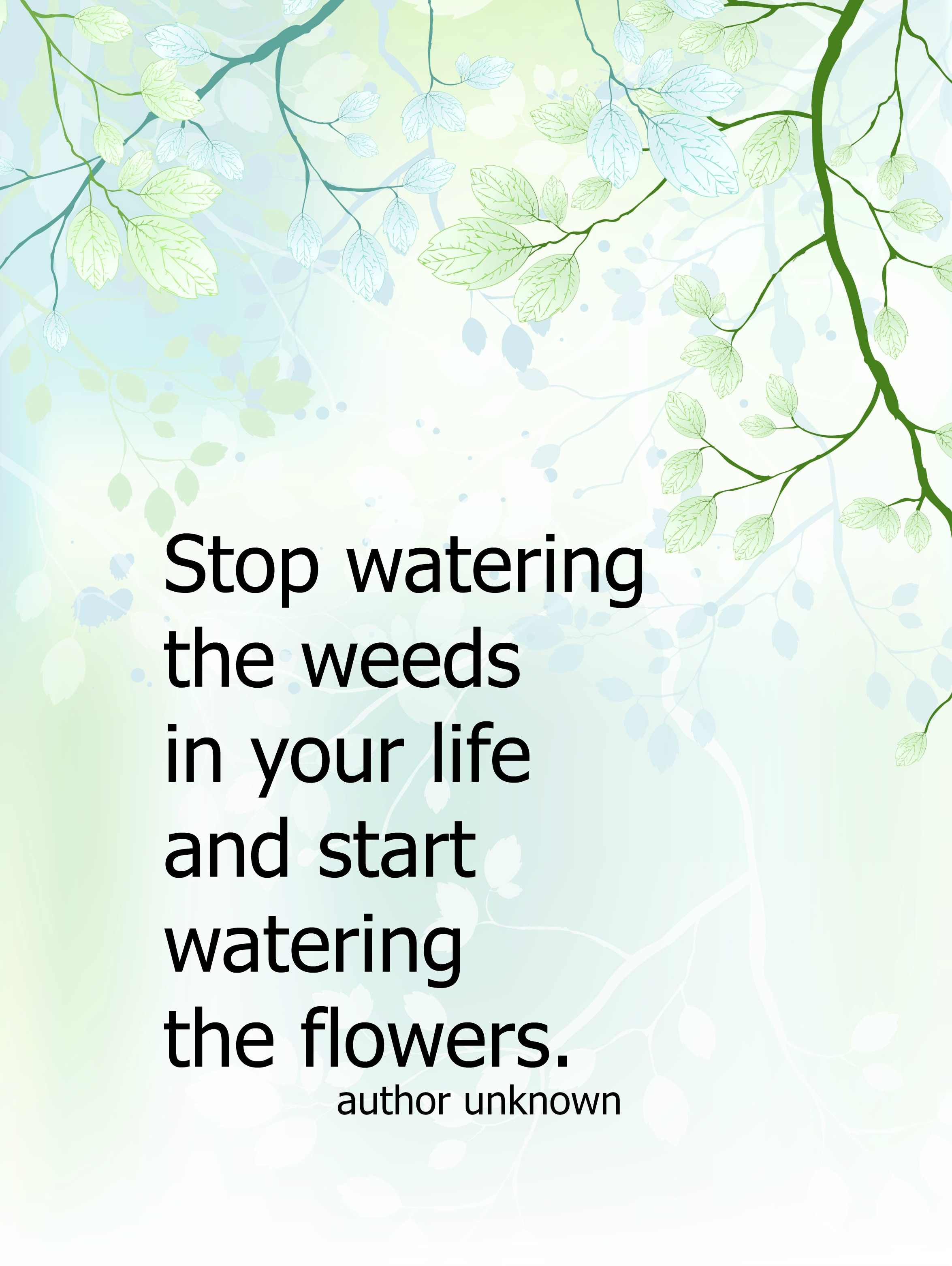 Stop watering the weeds in your live and start watering the flowers