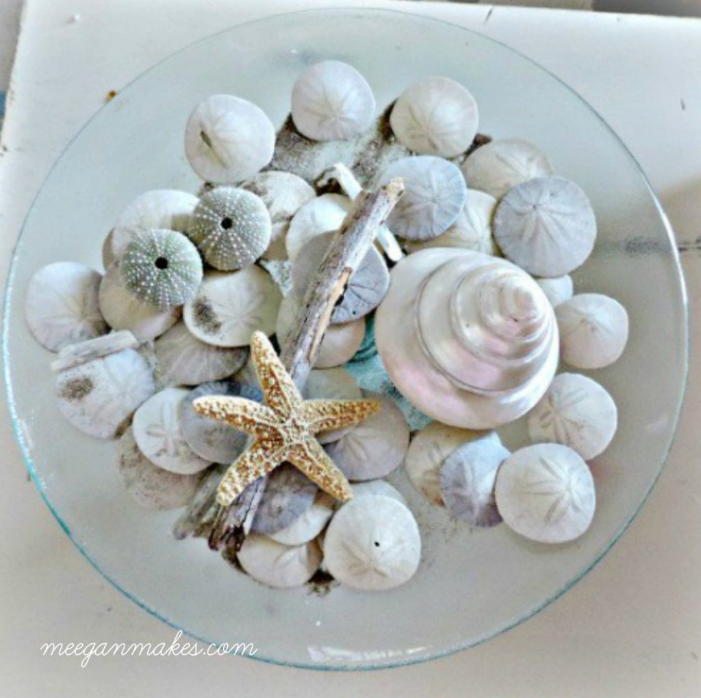 Sand dollars and Starfish on a pedestal. So classic.