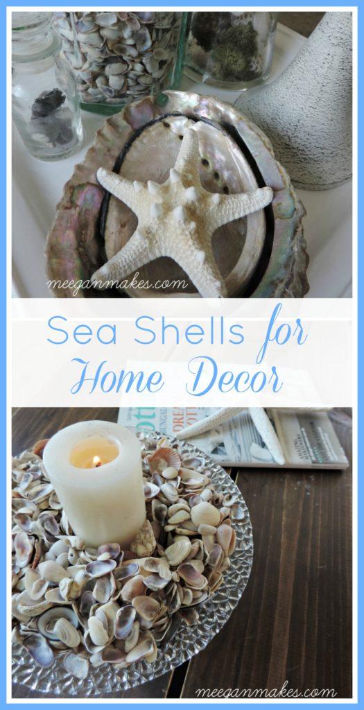 Sea Shells for Home Decor
