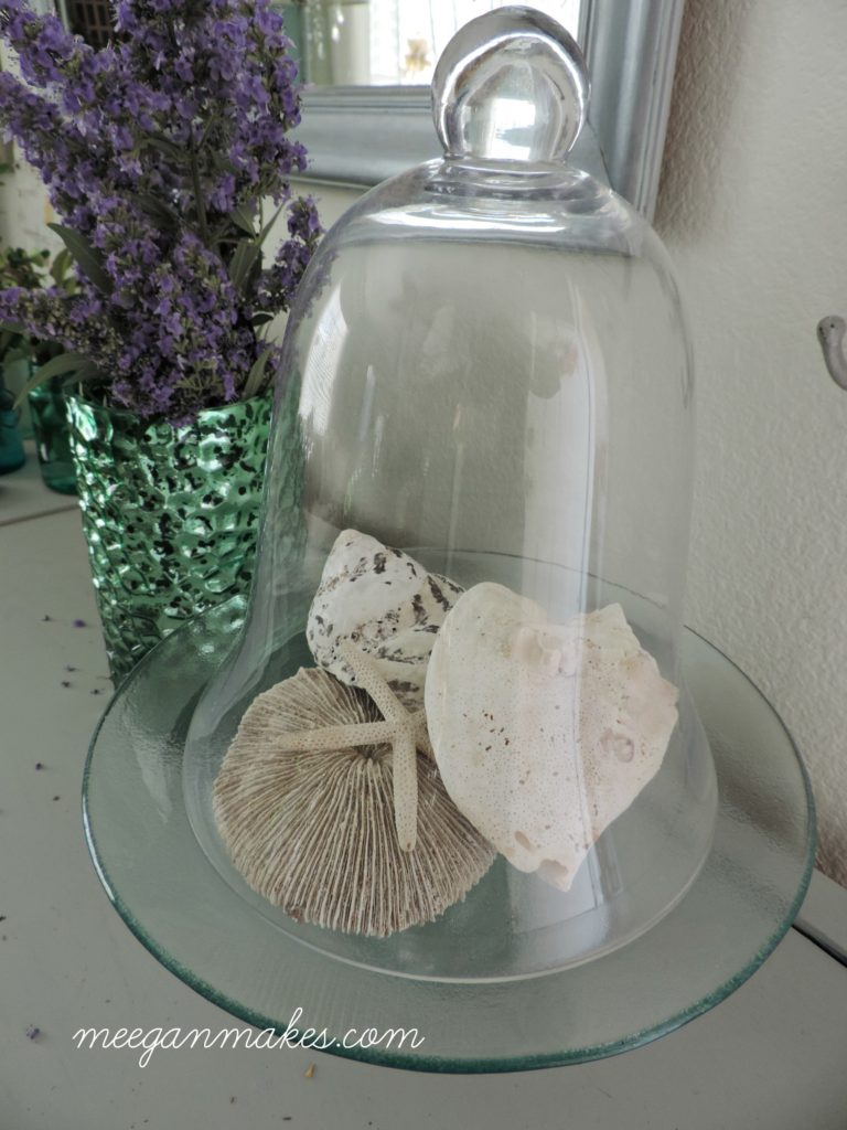 Shells Under a Cloche' So pretty for Summer