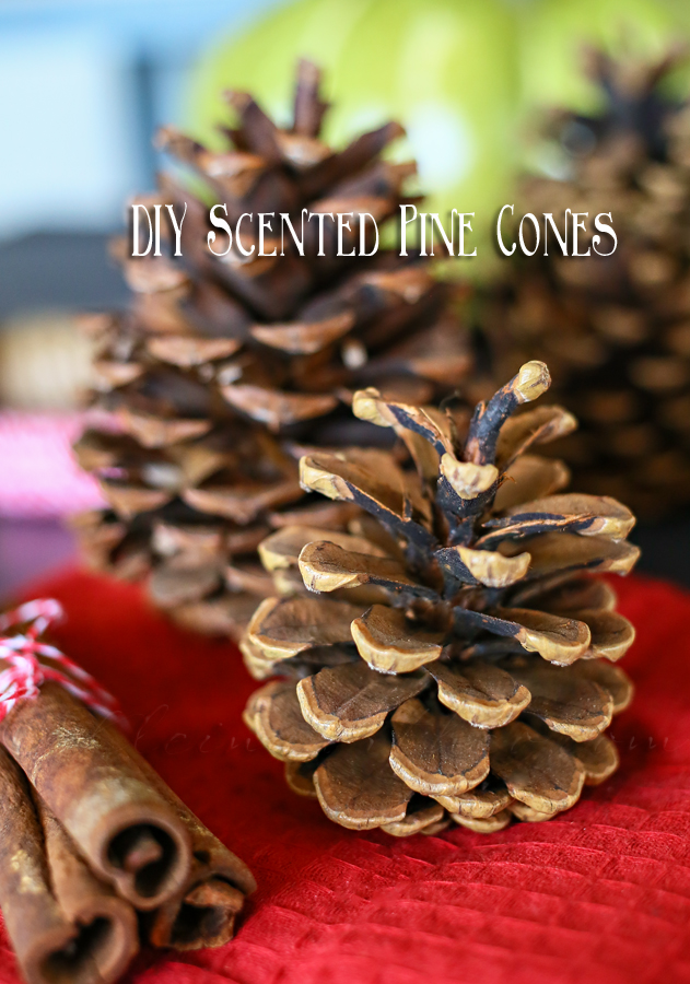diy-scented-pinecones
