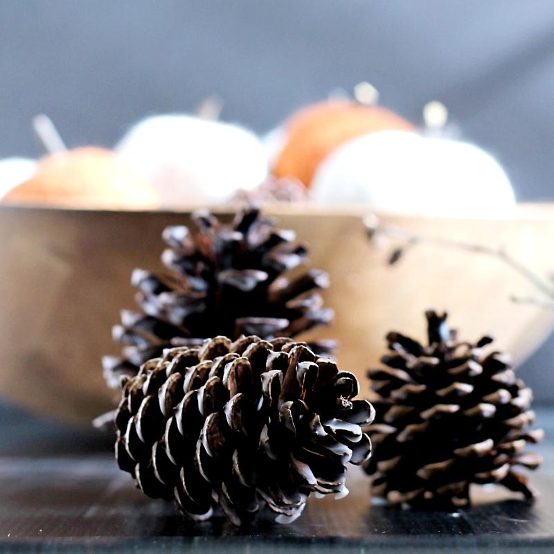 scented-wax-pine-cones-sq-gardenmatter-com_