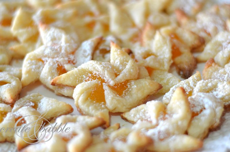 apricot-pinwheel-cookies-11