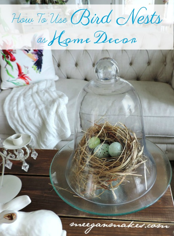 Well, Let Me Try And Explain What I Mean With Thrifty Ideas On How To Use  Bird Nests In Home Decor.