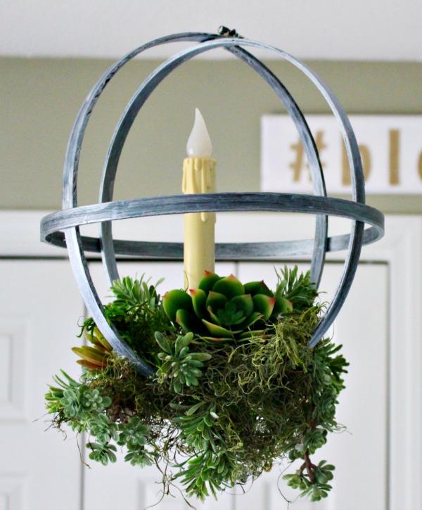 Succulent Hoops
